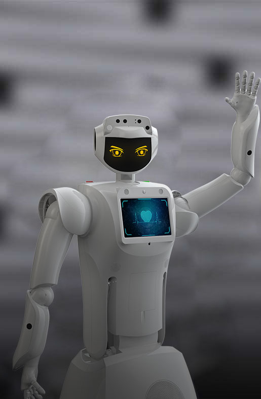 humanoid robot, commercial service robot, humanoid service robotics